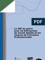 Le Défi Du Genre Pour Les Entreprises ETA Et Les CFP