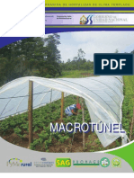 macrotunel
