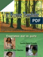 Los Bosques Templados