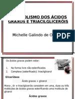 Aula 18.10.08 Metabolismo dos AG e Triacilgliceróis sem figuras