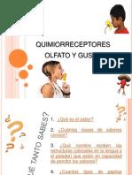 QUIMIORRECEPTORES[1]