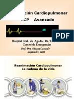 rcp_Avanzado_adulto1[1]