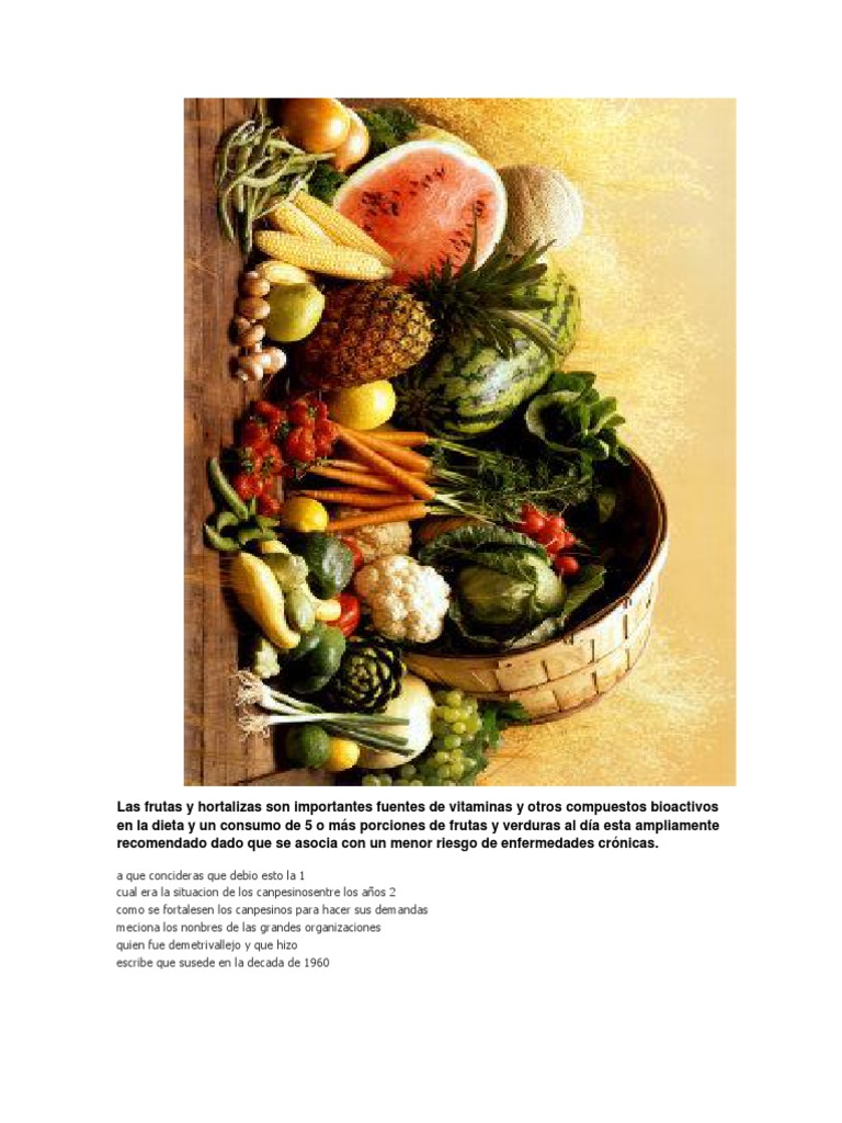5 verduras mas importantes