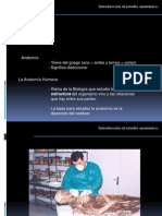 1° Clase Anatomía Aiep 2012