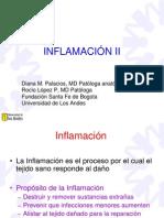Inflamacion UA 2010 2