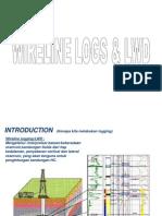 Wireline Logs & Lwd