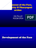 Development of the Face, Oral Cavity & Pharyngeal arches - PILLAY