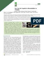 biomacromoleculasarticulo