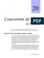 Conversion Raster a Vector