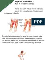 desgarros musculares 41