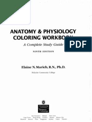 Coloring Book Anatomy Workbook
