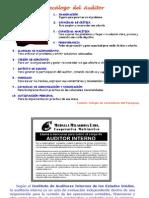 53293587 Capitulo i Auditoria Interna Conceptos 25-08-2009