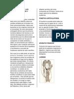 Breve Historia de Los Estudios Foneticos y Fonologicos