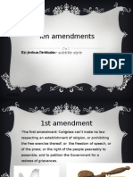 Ten Amendments