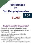 Biyoinformatik 6