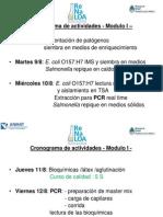 Salmonella Pasantia Modulo I 2