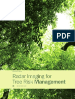 Radar Imaging for Tree Risk Management