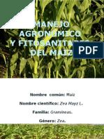 Maiz Manejo Agronomico y Fitosanitario