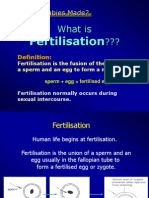 fertilizationslides-100904093547-phpapp02