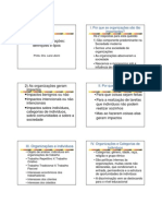 Aula 3 Organizacoes Definicoes e Tipos
