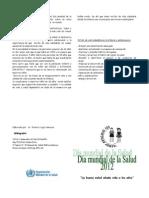 Dia Mundial de La Salud 2012