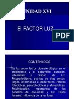 Factor Luz