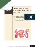 IPA KLS 8 BAB 4-Sistem an Dan Peredaran Darah Manusia