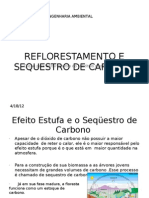 Ref Lore Stamen To e Sequestro de Carbono 2 (2)