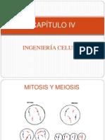 4.1 Ingeniería celular
