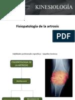 Fisiopatología de la artrosis