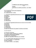 PRUEBA FORMATICA CELULA 2012