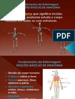 NOÇÕES BÁSICAS DE ANATOMIA