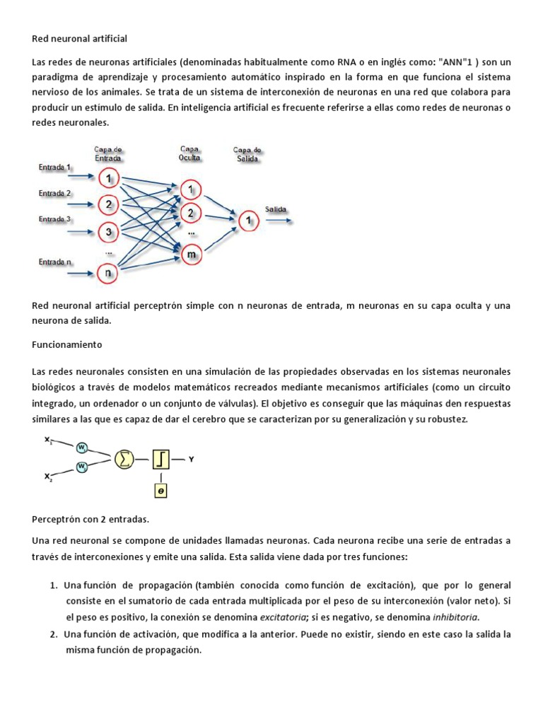 Circuito Neuronal : Red neuronal artificial