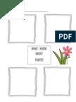 Eric Carle Plants Graphic Organizer