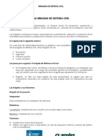 BRIGADISTAS DE DEFENSA CIVIL.pdf