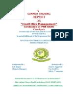 """""""Credit Risk Management"""""""
