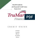 BRYAN F ERNST - TruMarkFinancial.fall2011