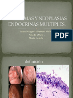 Apudomas y Neoplasias as Multiples