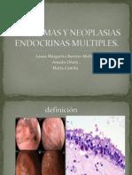 Apudomas y Neoplasias as Multiples