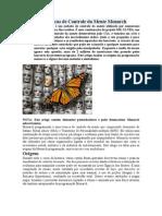 Origens e Técnicas de Controle da Mente Monarch