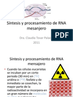 RNA_mensajero[1]