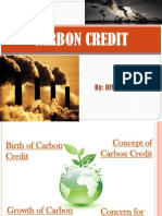 carboncredit-101013120806-phpapp02