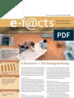 E-Facts 16 - E-Business + Existenzgründung