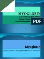 Myoglobin 1