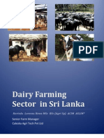 Dairy Farming Sector in Sri Lanka