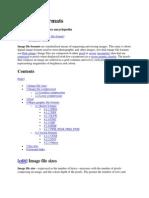 CE-201Image File Formats