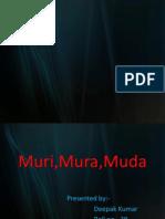 muri dk