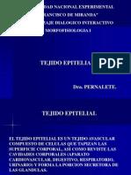 TEJIDO_EPITELIAL