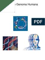 Projeto Genoma certo (1)
