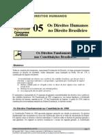 HUM 05 - Os Direitos Humanos No Dir Brasileiro